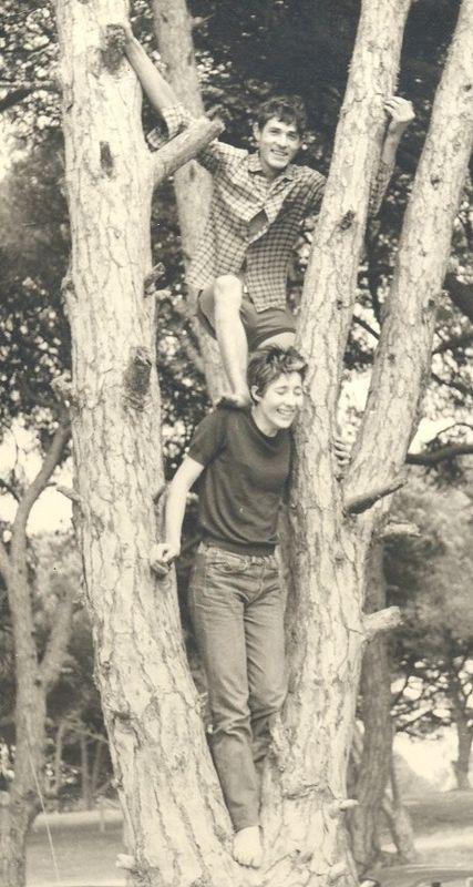 mes parents grimpent aux arbres