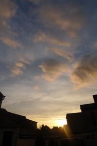 images_019