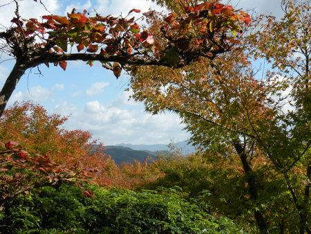 Japon_Kyoto_2009_2052