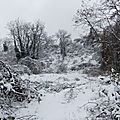 La Corniche des Forts sous la neige...