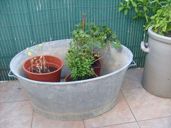 bassine