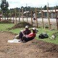 157 - Sur la route entre Addis Abeba et Debre Bihran