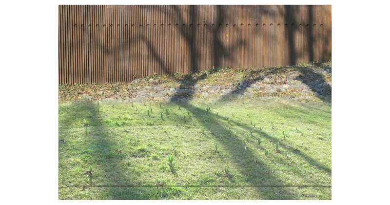 15-03-12, Rodez_Foirail (3)