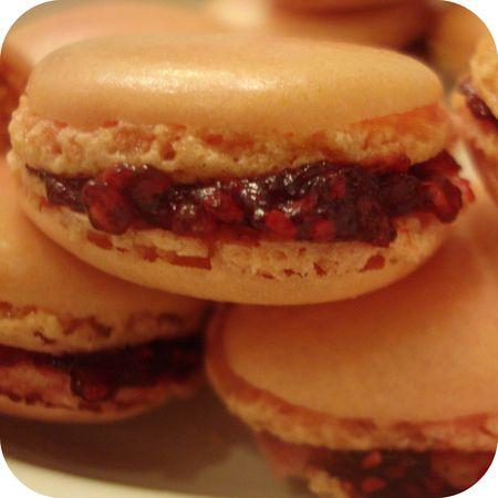 Macarons___la_framboise___2_