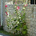 Juillet 2010 Mariage Blandine-Oléron-Gap 483