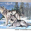 Z1 diamond painting loups partiel 002