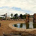 Zoo de chester : un nouvel éléphant sans doute victime d'un herpèsvirus