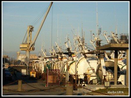 Armada_de_navires_de_p_ches___St_Malo_2
