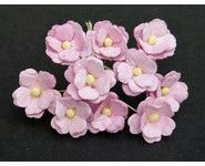 Daisy-Rose-573-2-small-1-www-lesscrapbidulesdauria-kingeshop-com[1]