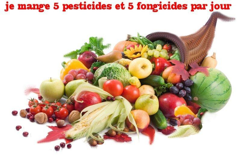 8 fruits-et-legumes_src_1