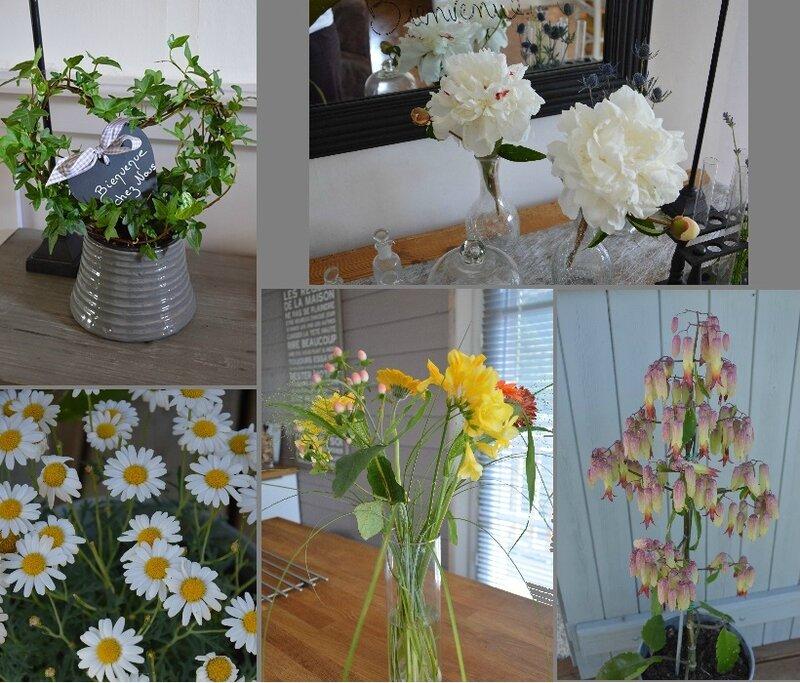 bouquet et compositions