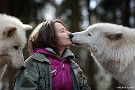 """Résultat de recherche d'images pour """"helene grimaud loups"""""""