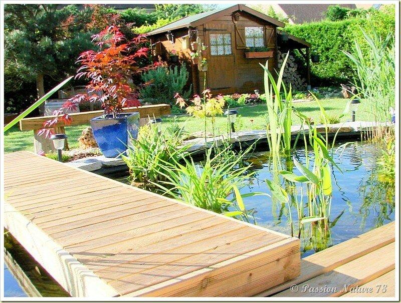 Le bassin...Mon petit coin de paradis (20)