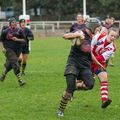 23IMG_0284T