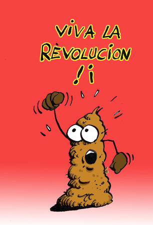 r_volucion_copie