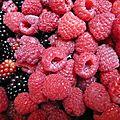 mures et framboises www.passionpotager.canalblog.com