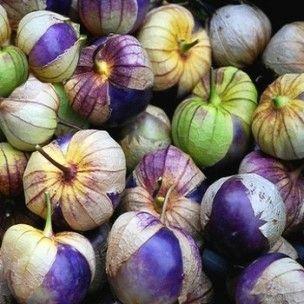 20-tomatillos pourpre