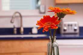 Risultati immagini per flowers in the kitchen