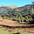 Le Layens depuis le bas du Castillon...
