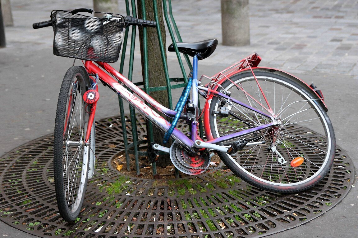 vélo, oeil_8953