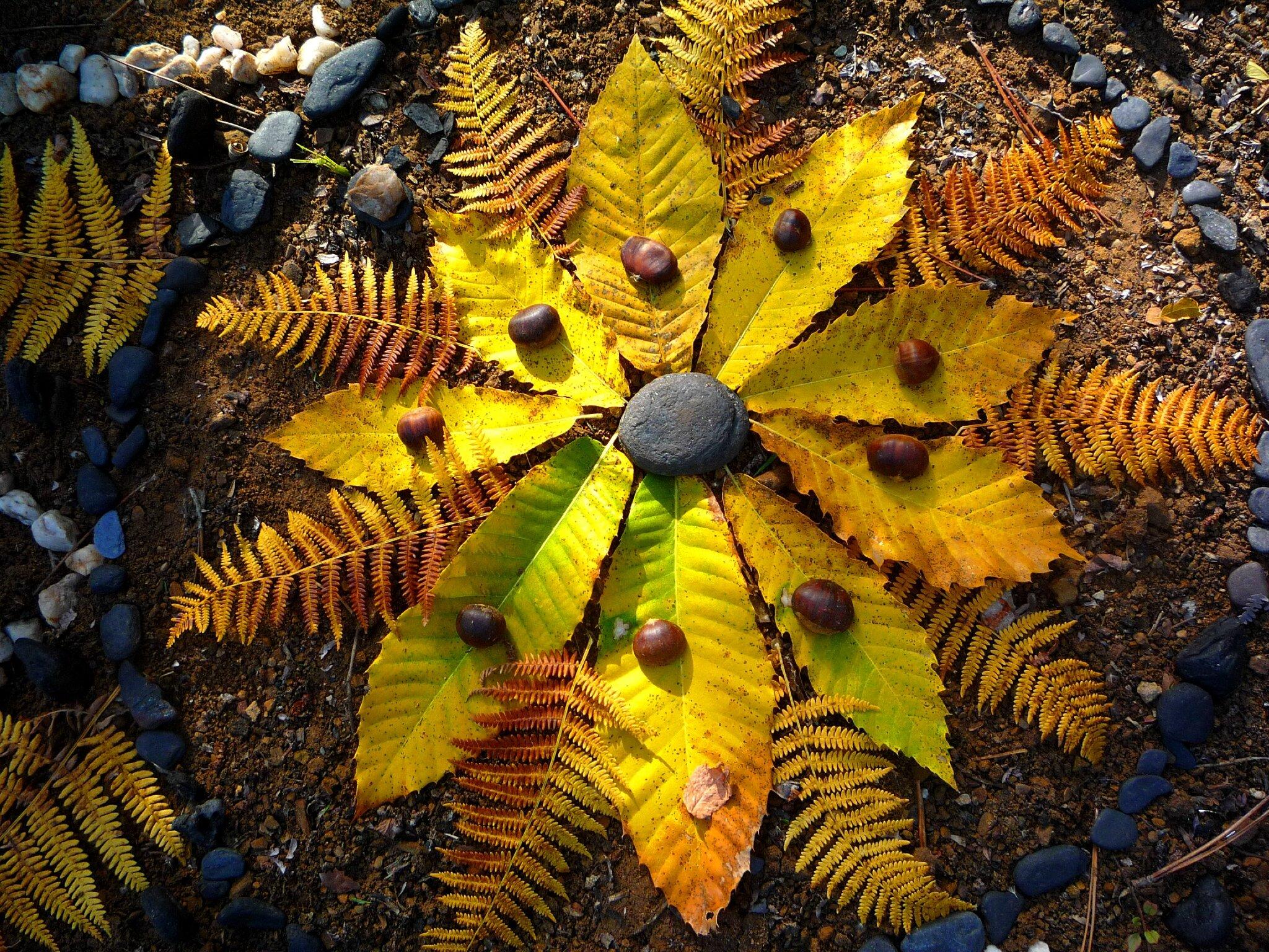 automne jaune en cercle yurtao