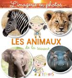 les animaux de la savane imagerie photos