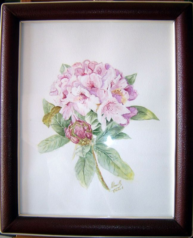 01-rhododendron-28X22