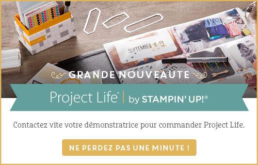 project_life_su