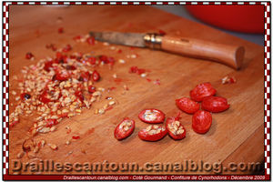 Confiture_Cynorohodons_07