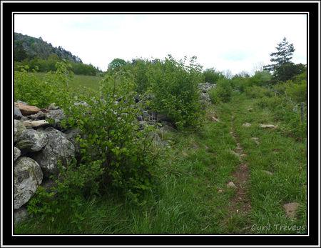 2010_06_01_Sur_le_chemin_autour_de__la_Tortue__pr_s_de_Boussoulet__3_
