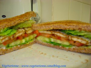 sandwich_tofu_slices