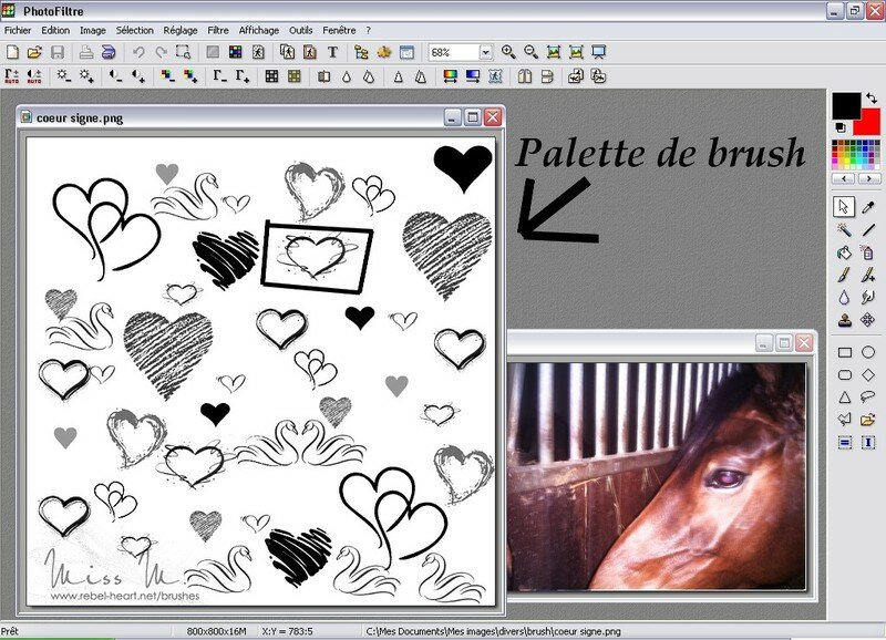 Comment Mettre Des Brush Tutorial To Filtre