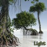 01 Dagobah mangrove tree light Ryzophora 3D Star Wars C4D max obj 3ds Icon
