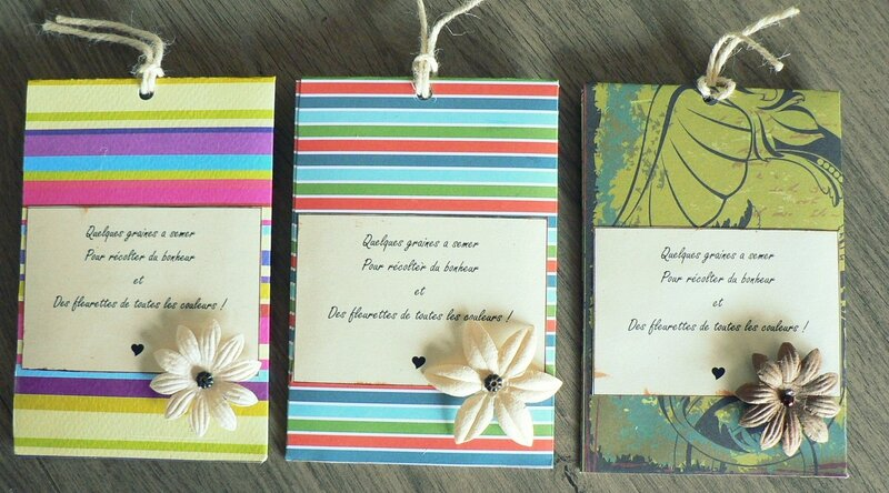 sachets de graines lot 2