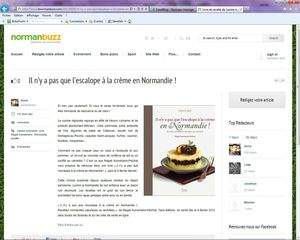 Revue de presse Normanbuzz copie