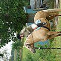 Jeux équestres manchots - parcours de pleine nature après-midi (149)
