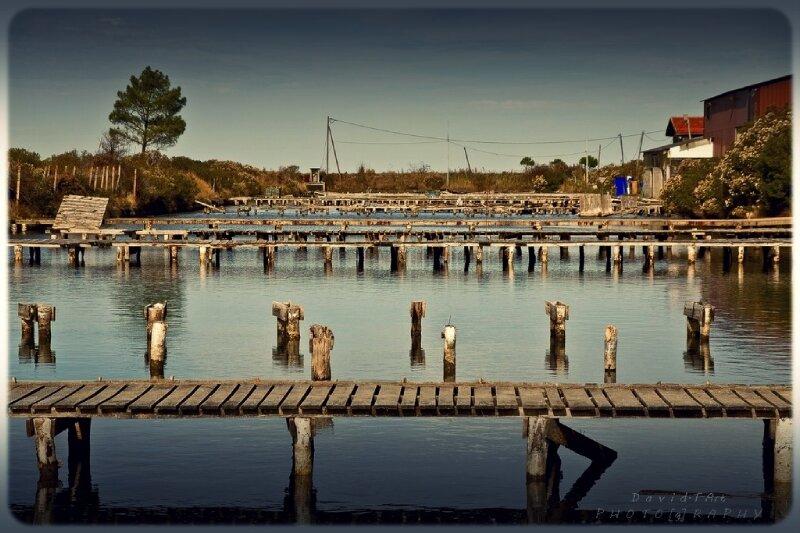 les ports de gujan-mestras (10)