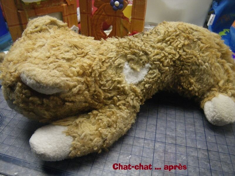 chatchat d'aymeric aprs