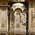 Rajasthan_copyright_0213_Cathy_Wagner_N0882