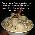 Contact direct du grand marabout ganhozogbe