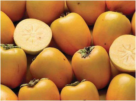 kaki fruit blog chez requia