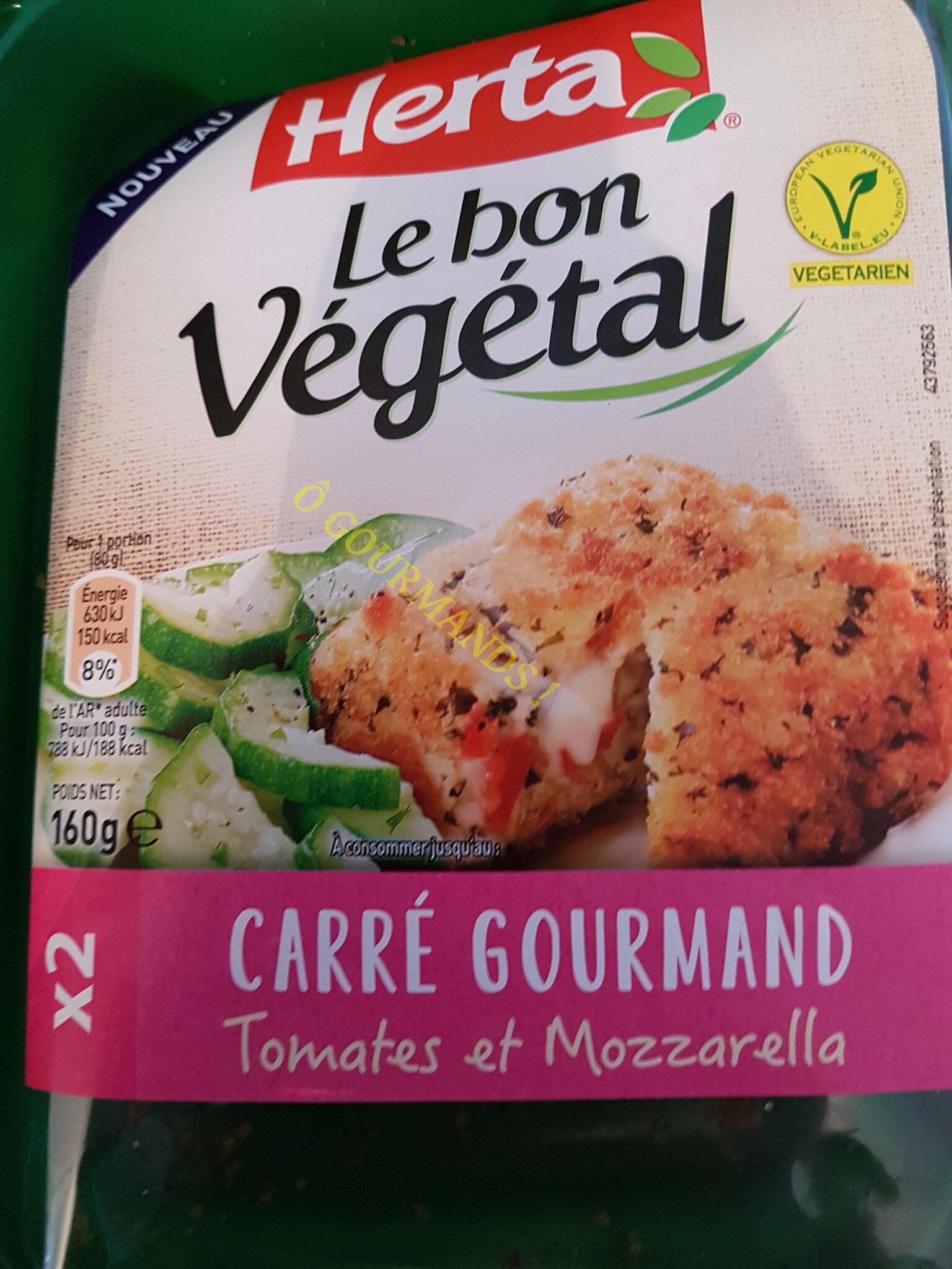 Carré Tomate Mozzarella