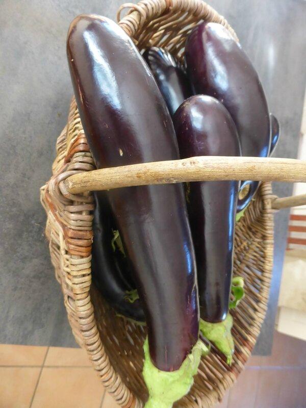 10-aubergines (2)