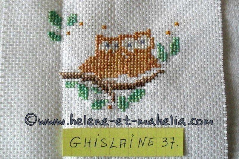 ghislaine37_salaout15_8