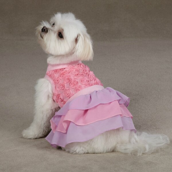 cotton-candy-dog-dress-pink-1