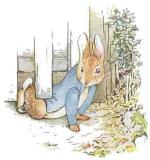 clip-art-beatrix-potter-523200