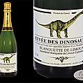 Les dinosaures des vignobles salasar !