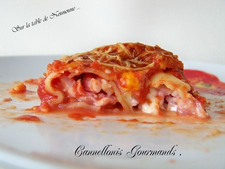 Cannellonis Gourmands 1