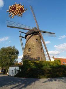 Gent_moulin
