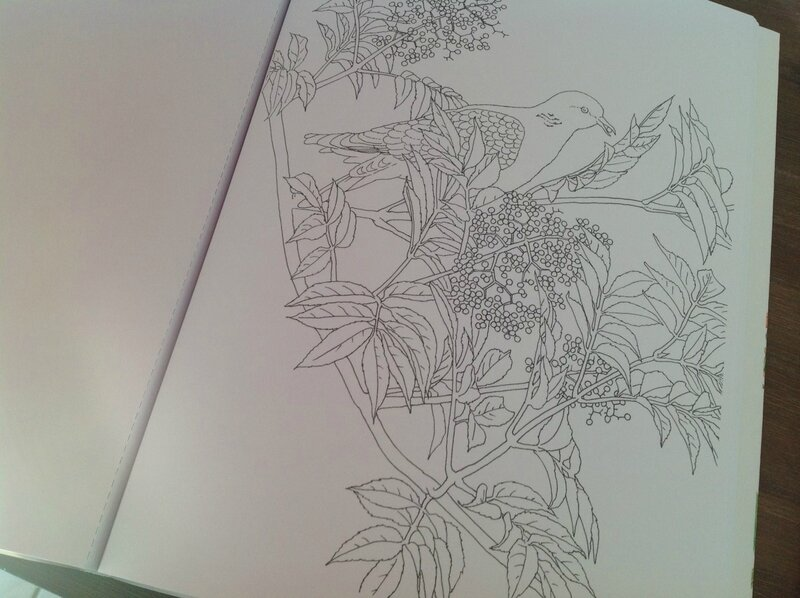 Coloriages adultes3